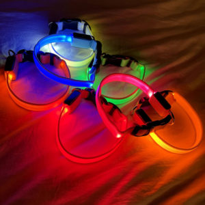 Light Up Pet Collar All Colors Displayed On A Sheet Nighttime Linked