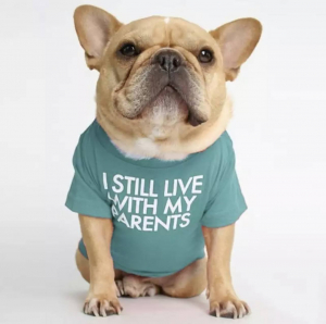 I Still Live With My Parents Pet Tee Modeled On A Dog Front