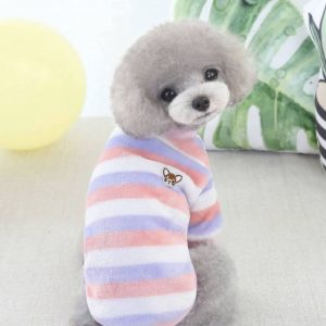 Cutie Creature Fun Sweater Blue Pink & White Stripes Modeled On A Dog Back