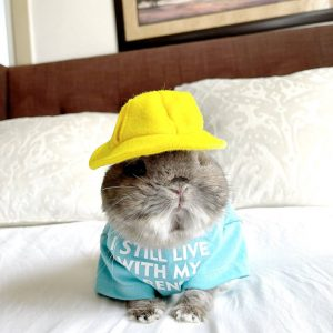 I Still Live With My Parents Pet Tee Modeled On A Bunny
