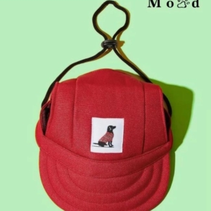 Simple Pal Sunny Baseball Cap Red Green Background